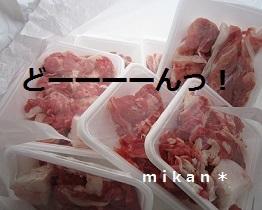 肉いっぱい.jpg